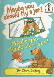 Maybe you should fly a jet